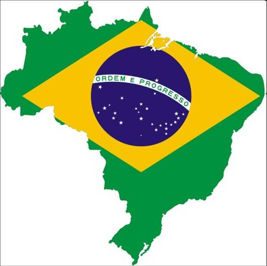 Perceptions of the value of generics in Brazil